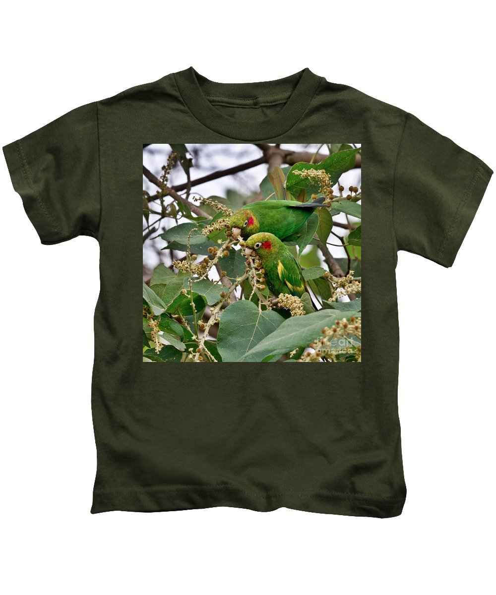 Parrot Kids T-Shirt featuring the photograph Brace Of Chiriqui Conures by Heiko Koehrer-Wagner