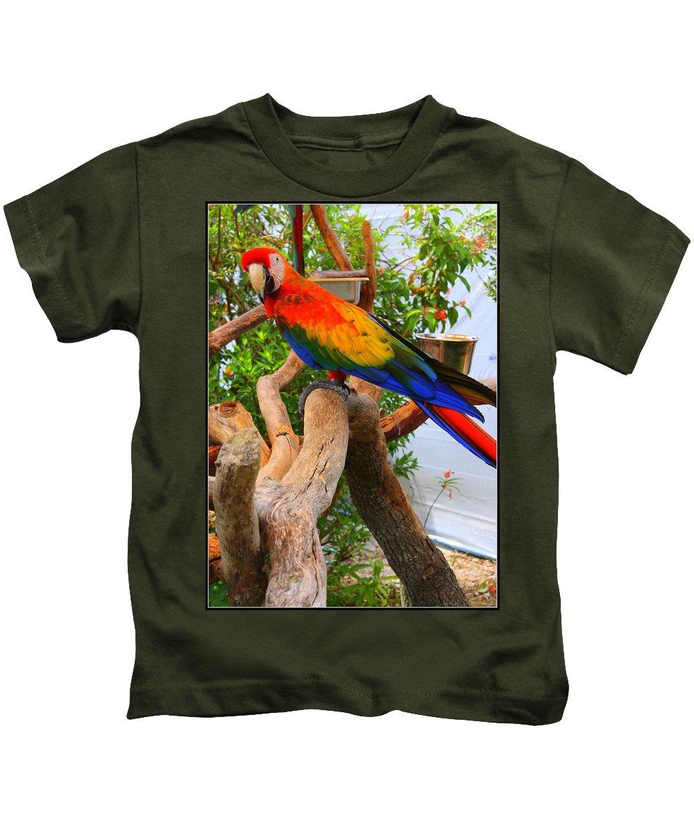 Brazilian Parrot Kids T-Shirt featuring the photograph Brazilian Parrot by Dora Sofia Caputo Photographic Design and Fine Art
