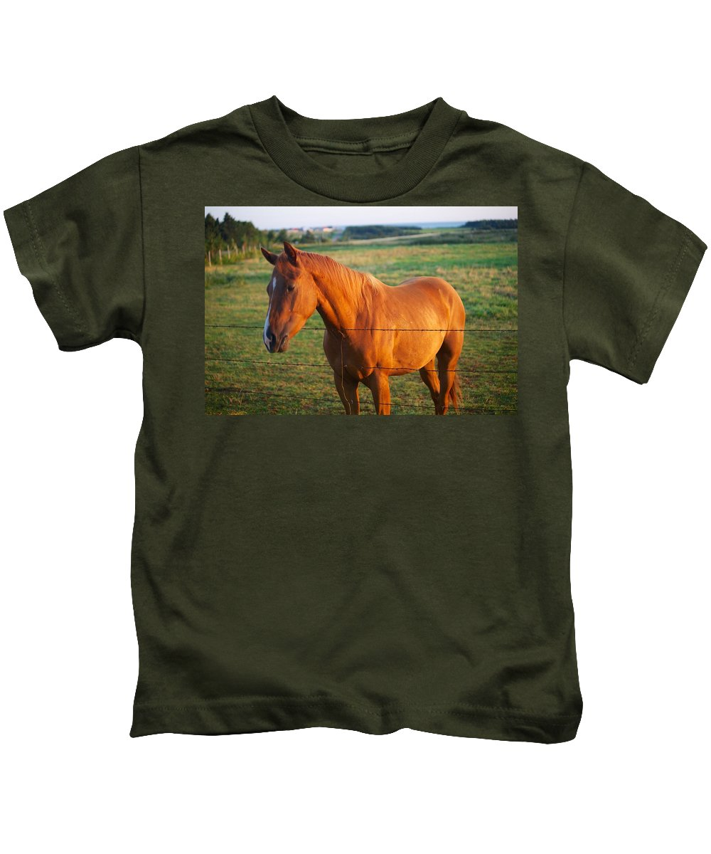 Horse Kids T-Shirt featuring the photograph Breakfast Time by Allan Morrison