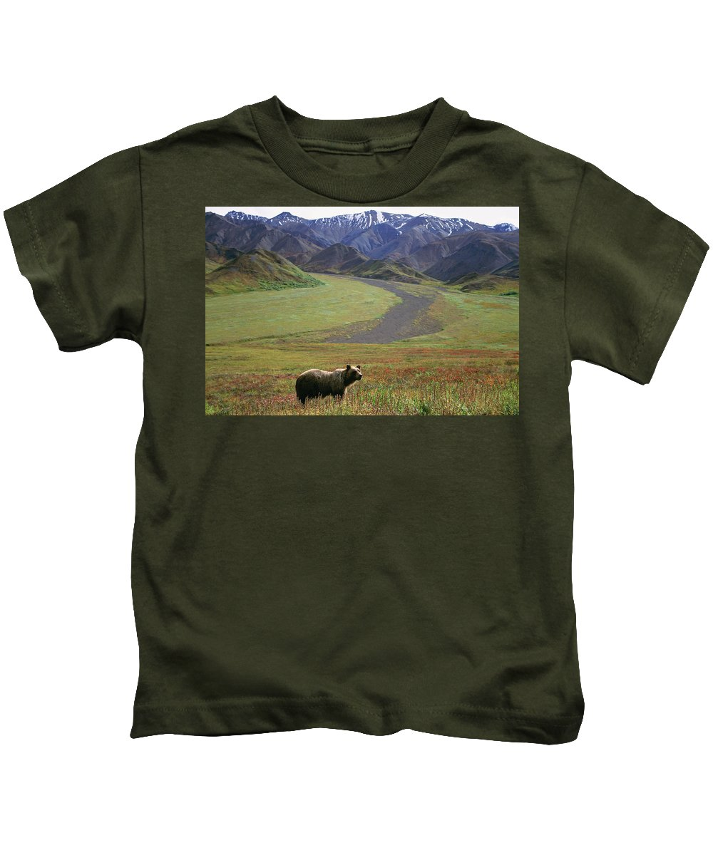 Alaska Kids T-Shirt featuring the photograph Brown Grizzly Bear In Denali National by Cary Anderson