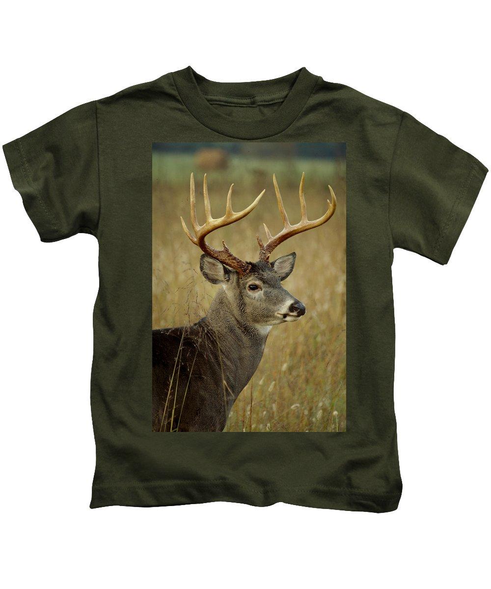 Deer Kids T-Shirt featuring the photograph Buck by Eric Albright