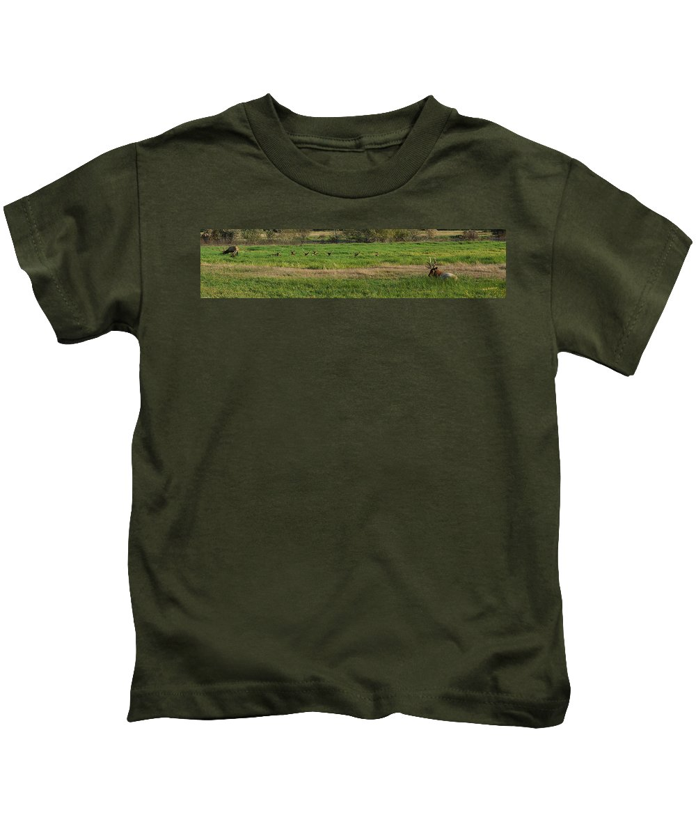 Panorama Kids T-Shirt featuring the photograph Bull Elk At Dean Creek by Mick Anderson