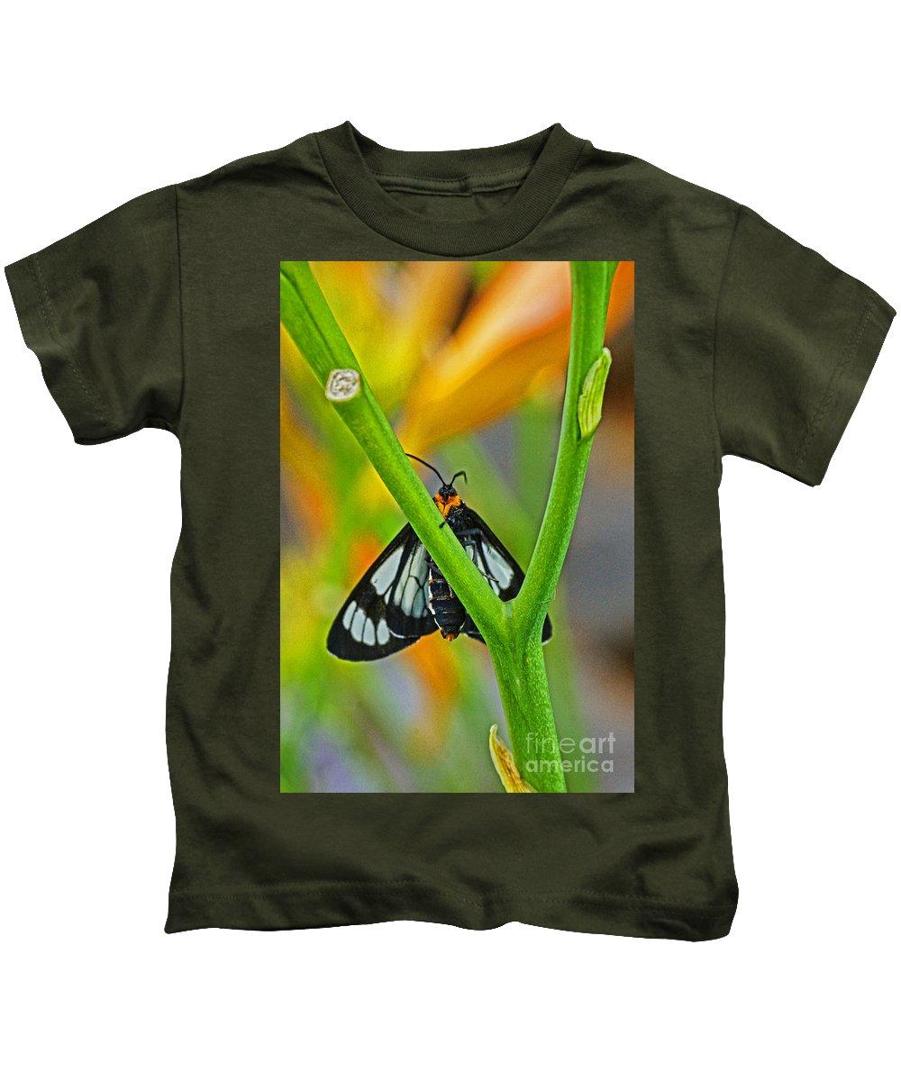 Butterflies Kids T-Shirt featuring the photograph Butterfly An3597-13 by Randy Harris