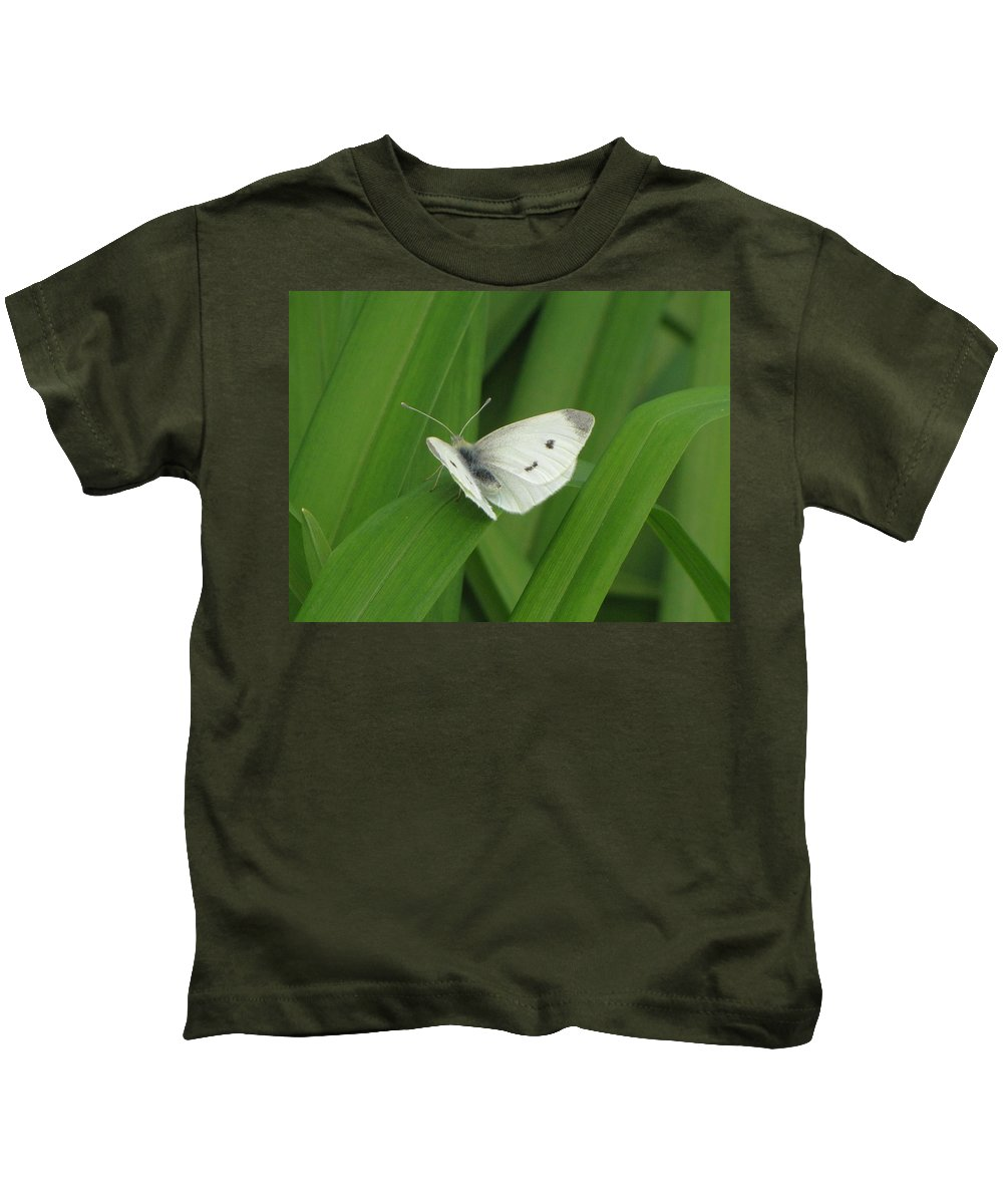 Cabbage White Butterfly Kids T-Shirt featuring the photograph Cabbage White Butterfly by MTBobbins Photography