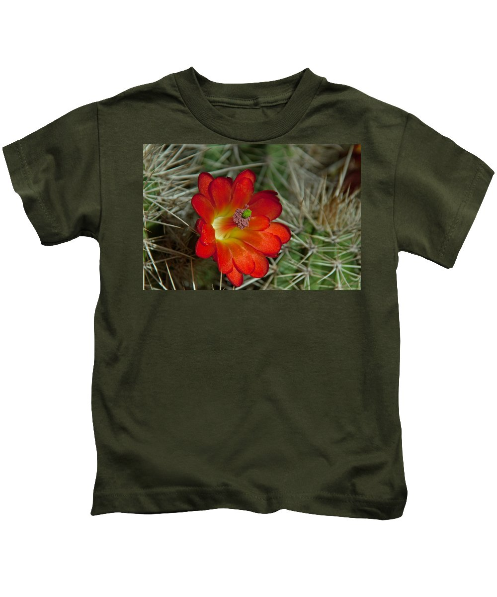 Cactus Kids T-Shirt featuring the photograph Cactus Flower by Tam Ryan