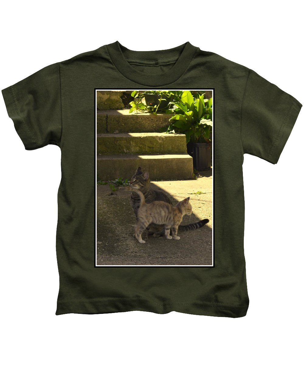 Kitten Kids T-Shirt featuring the photograph Cali And Hadon by Kathy Barney