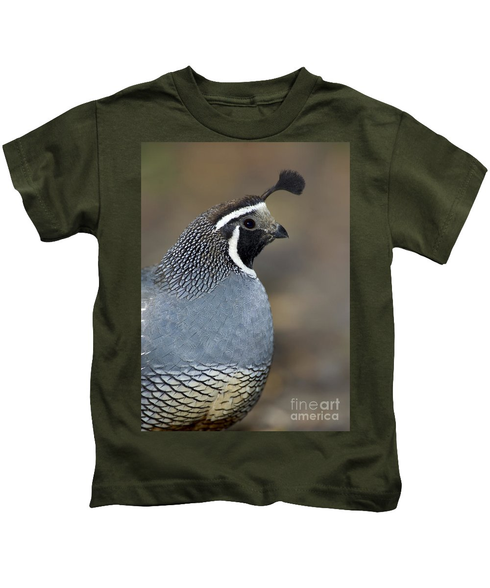 Animal Kids T-Shirt featuring the photograph California Quail by Anthony Mercieca