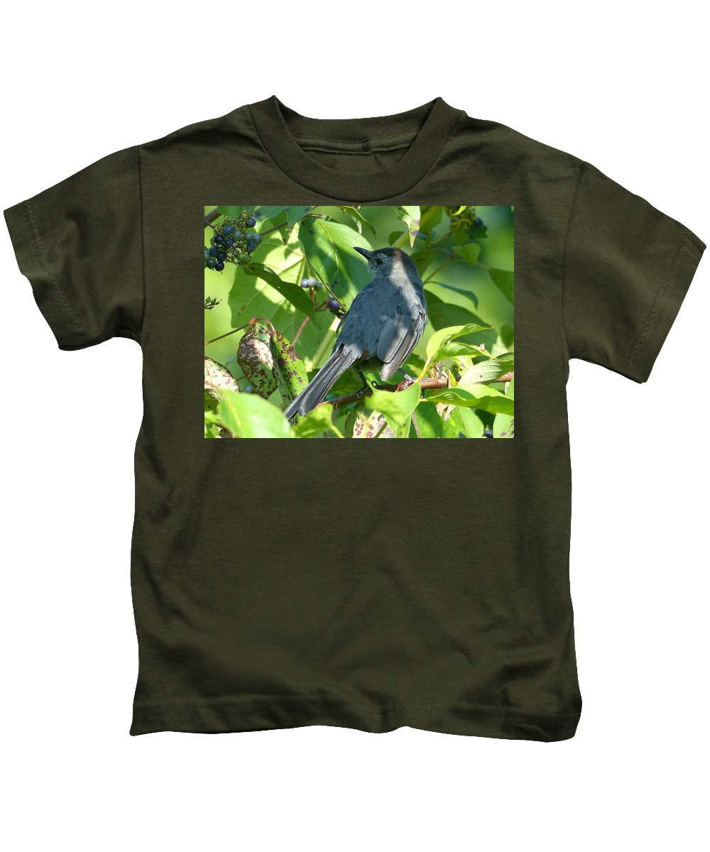 Outdoors Kids T-Shirt featuring the photograph Catbird by Charles Ford