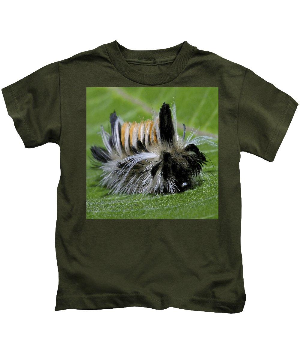 Caterpillar Kids T-Shirt featuring the photograph Caterpillar 22 by Ingrid Smith-Johnsen