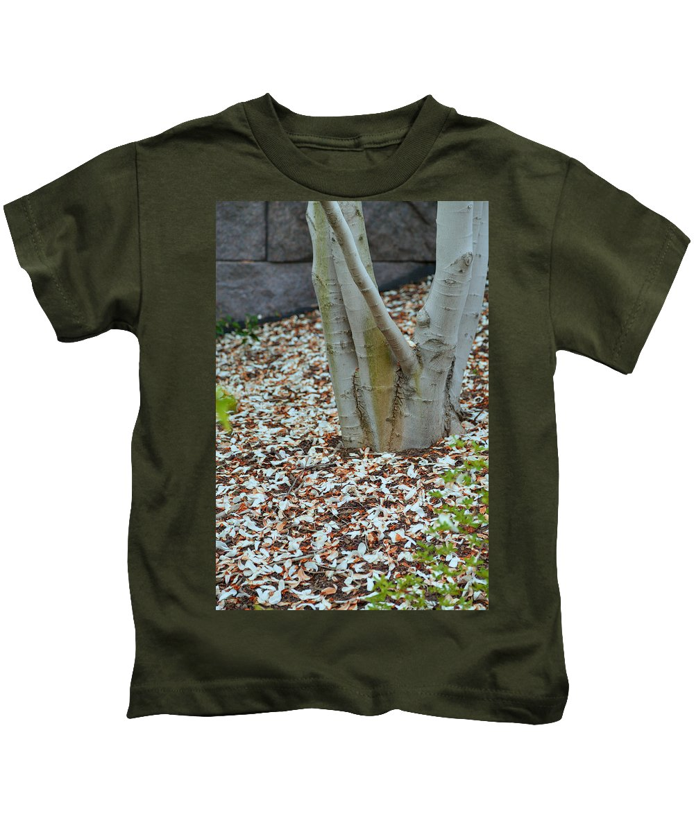 Architectural Kids T-Shirt featuring the photograph Cherry Blossoms 2013 - 002 by Metro DC Photography