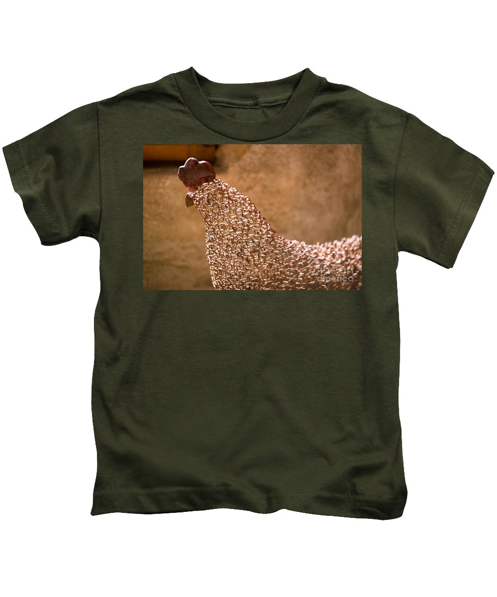 Chicken Wire Kids T-Shirt featuring the photograph Chicken Wire by Brothers Beerens