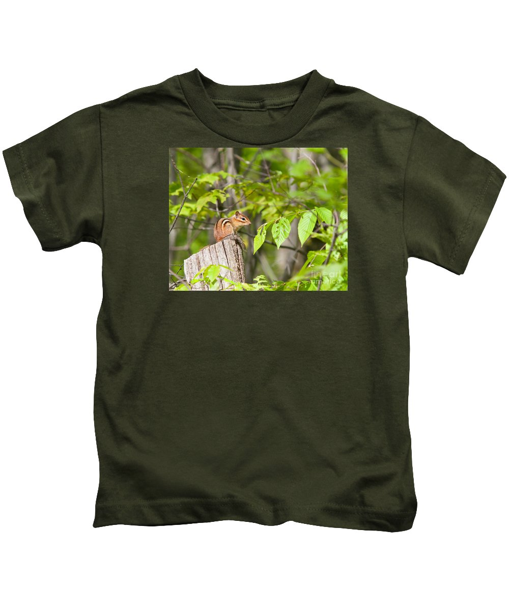 Chippy Kids T-Shirt featuring the photograph Chipmunk Shares Fence Post by Timothy Flanigan and Debbie Flanigan