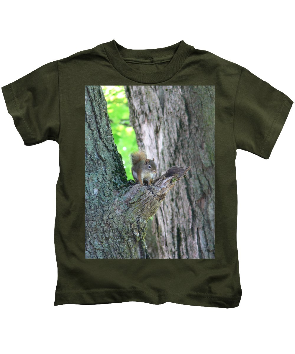 Baby Gray Squirrel Kids T-Shirt featuring the photograph Chipper by Natalie LaRocque