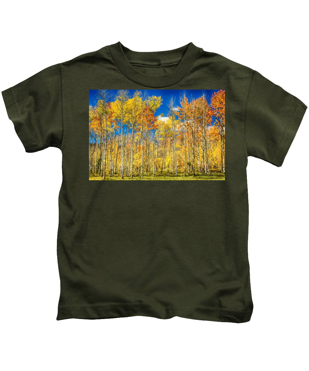 Aspen Kids T-Shirt featuring the photograph Colorful Colorado Autumn Aspen Trees by James BO Insogna