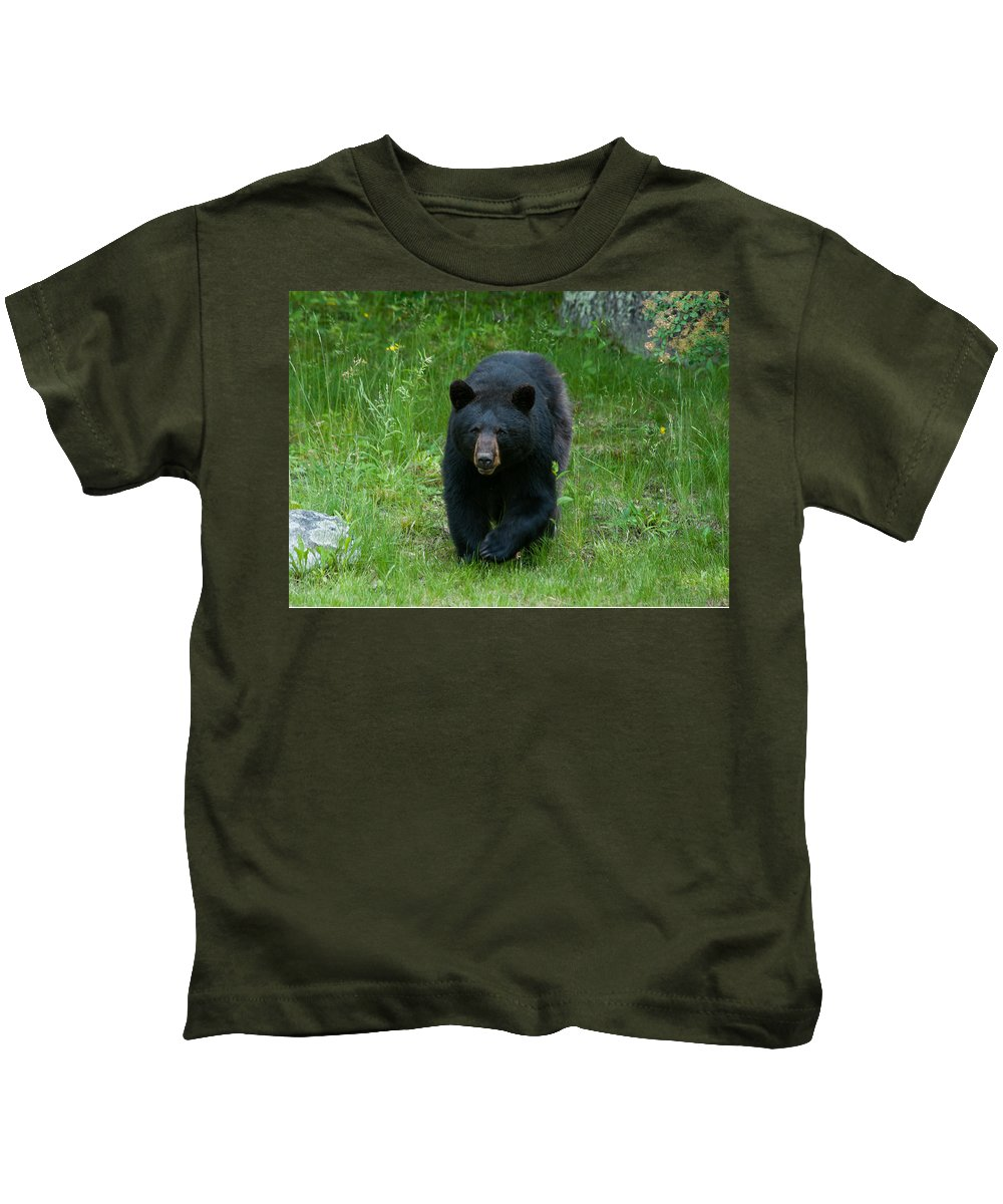 Bears Kids T-Shirt featuring the photograph Coming At Ya by Brenda Jacobs