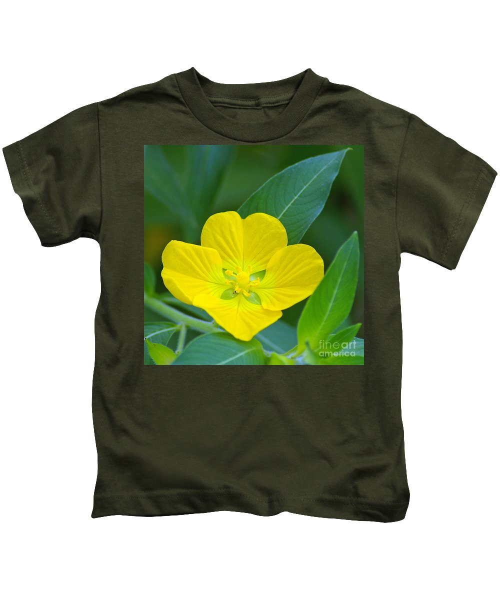 Primrose Kids T-Shirt featuring the photograph Common Primrose Willow 1 by Nancy L Marshall