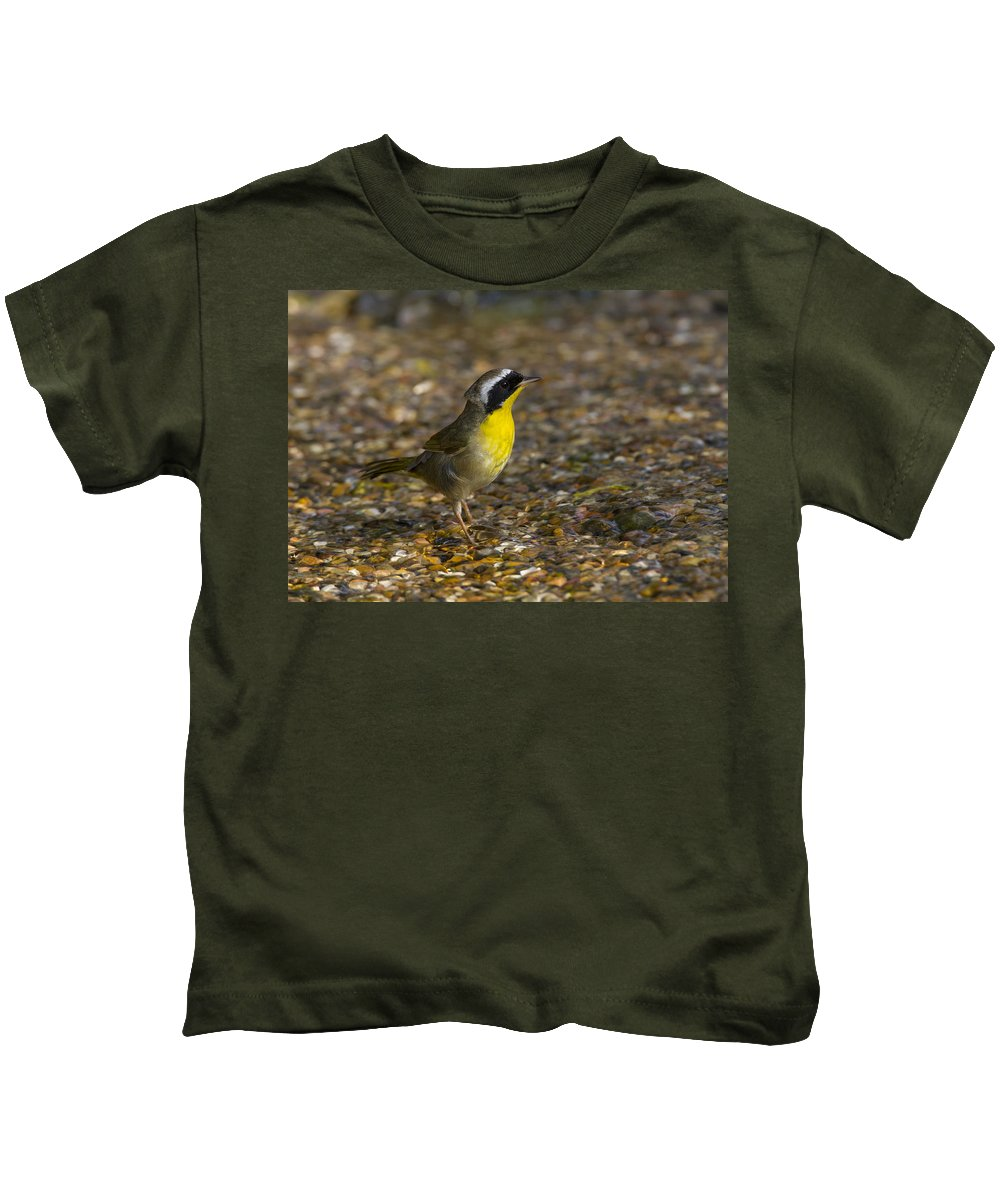 Doug Lloyd Kids T-Shirt featuring the photograph Common Yellowthroat by Doug Lloyd