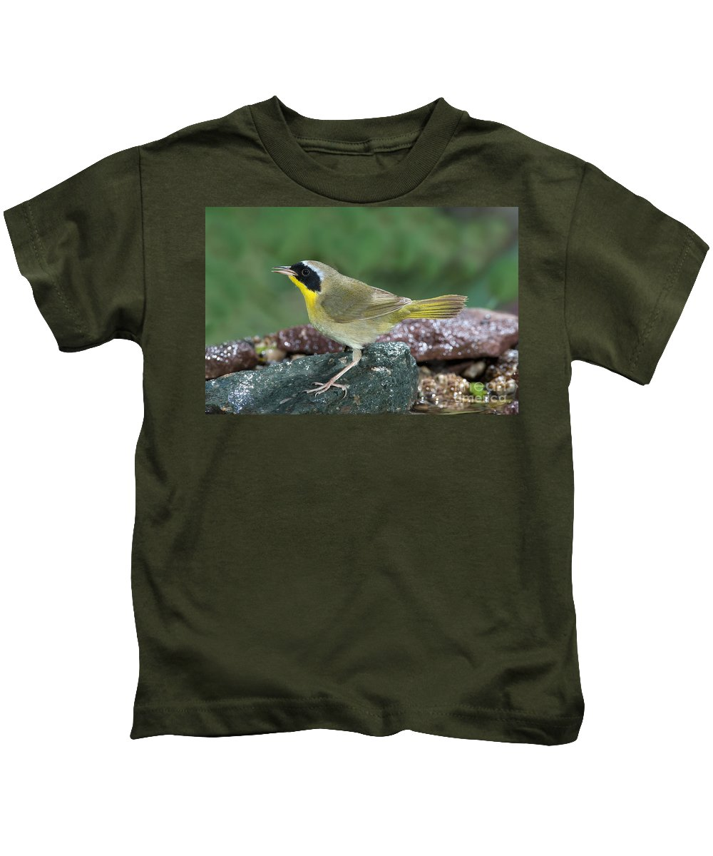 Fauna Kids T-Shirt featuring the photograph Common Yellowthroat Geothlypis Trichas by Anthony Mercieca
