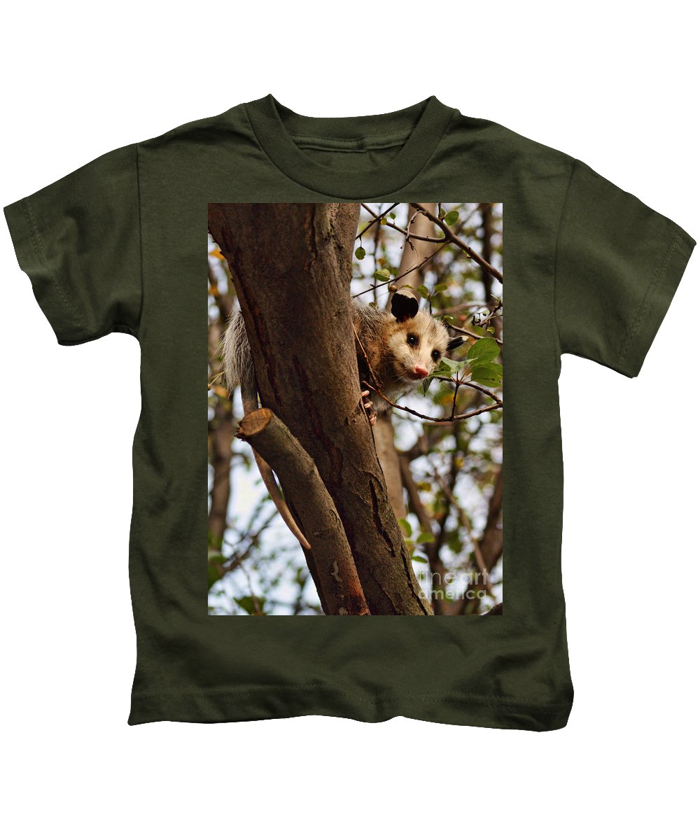 Possum Kids T-Shirt featuring the photograph Coucou by Nikolyn McDonald