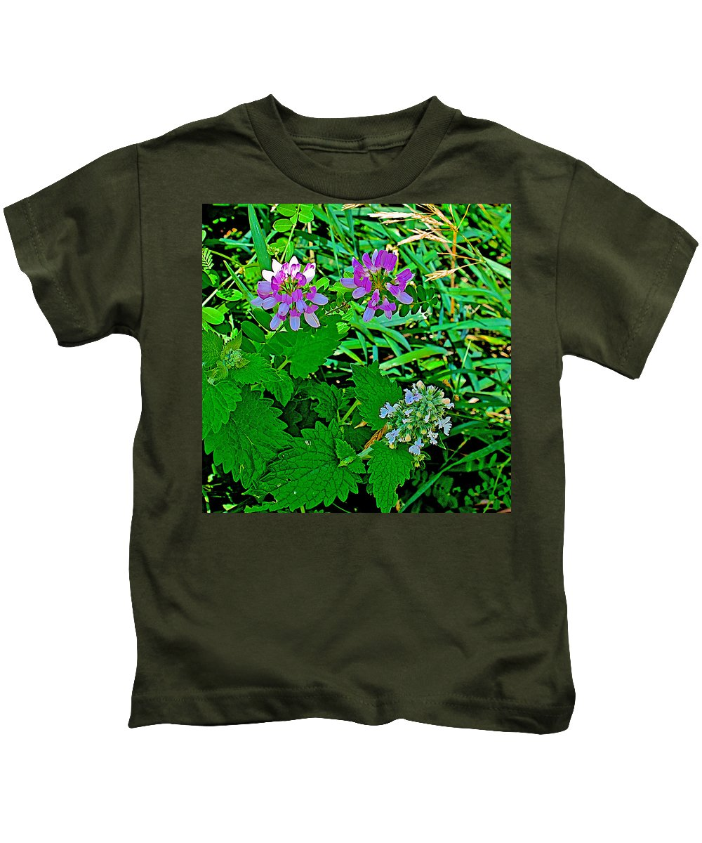 Crown Vetch And Catnip In Pipestone National Monument Kids T-Shirt featuring the photograph Crown Vetch And Catnip In Pipestone National Monument-minnesota by Ruth Hager