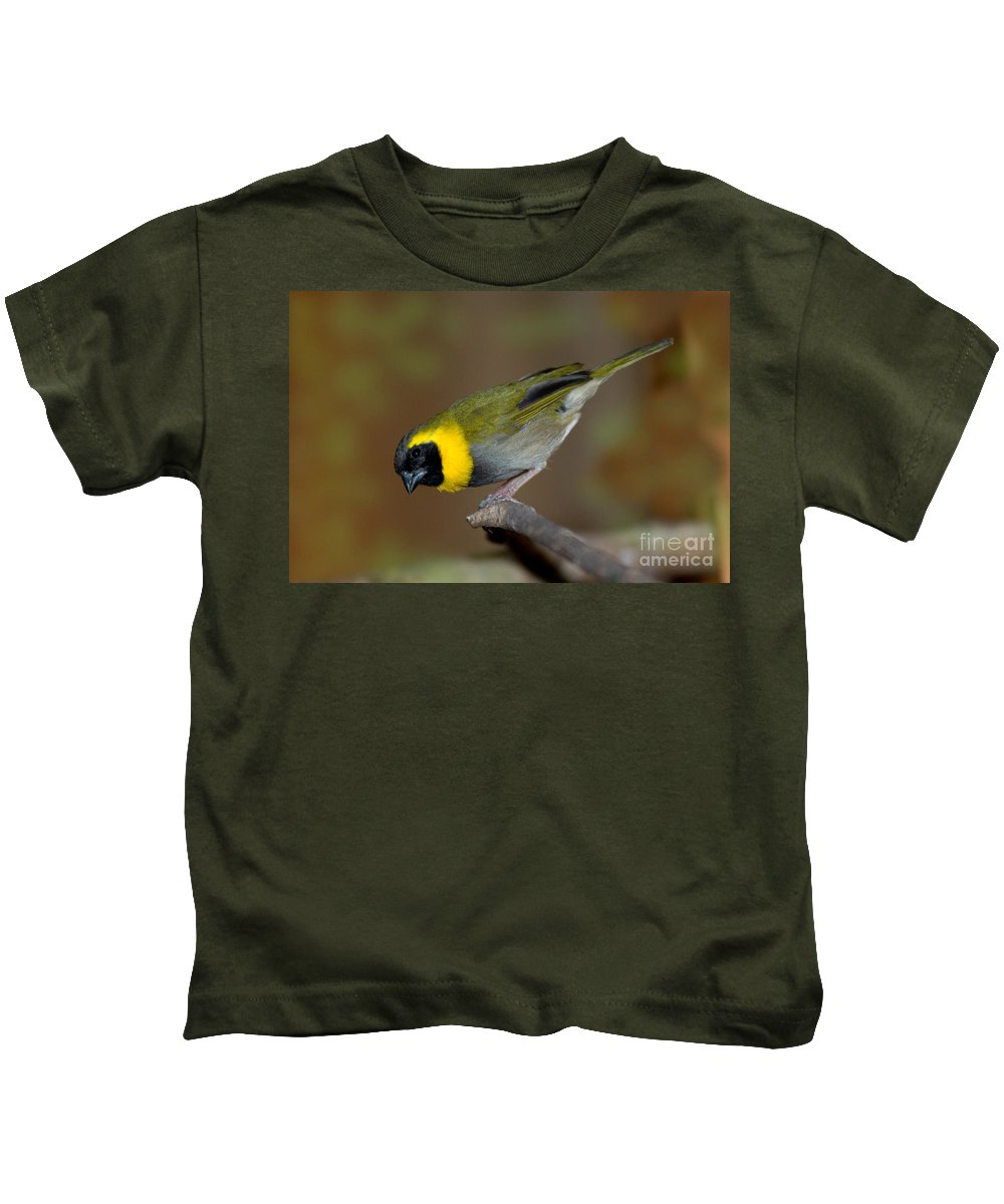 Cuban Finch Kids T-Shirt featuring the photograph Cuban Melodius Finch by Anthony Mercieca