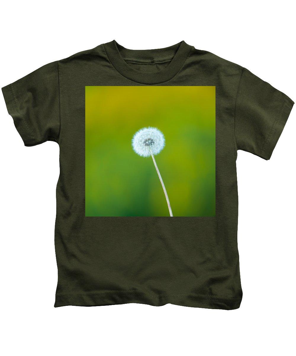 Fall Kids T-Shirt featuring the photograph Dandelion by Sebastian Musial