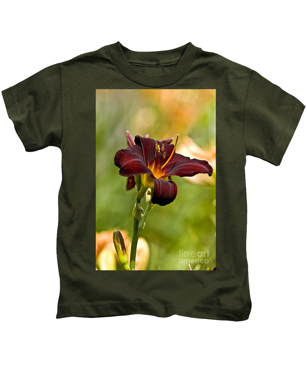 Daylily Kids T-Shirt featuring the photograph Daylily Pictures 576 by World Wildlife Photography