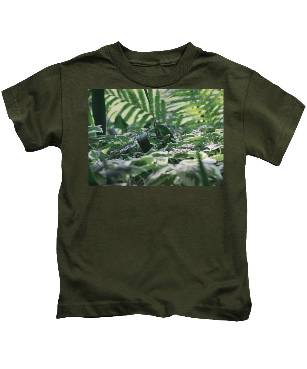 Dazzle Camouflage Kids T-Shirt featuring the photograph Dazzle Camouflage Patterns In The Garden by Kyra Savolainen