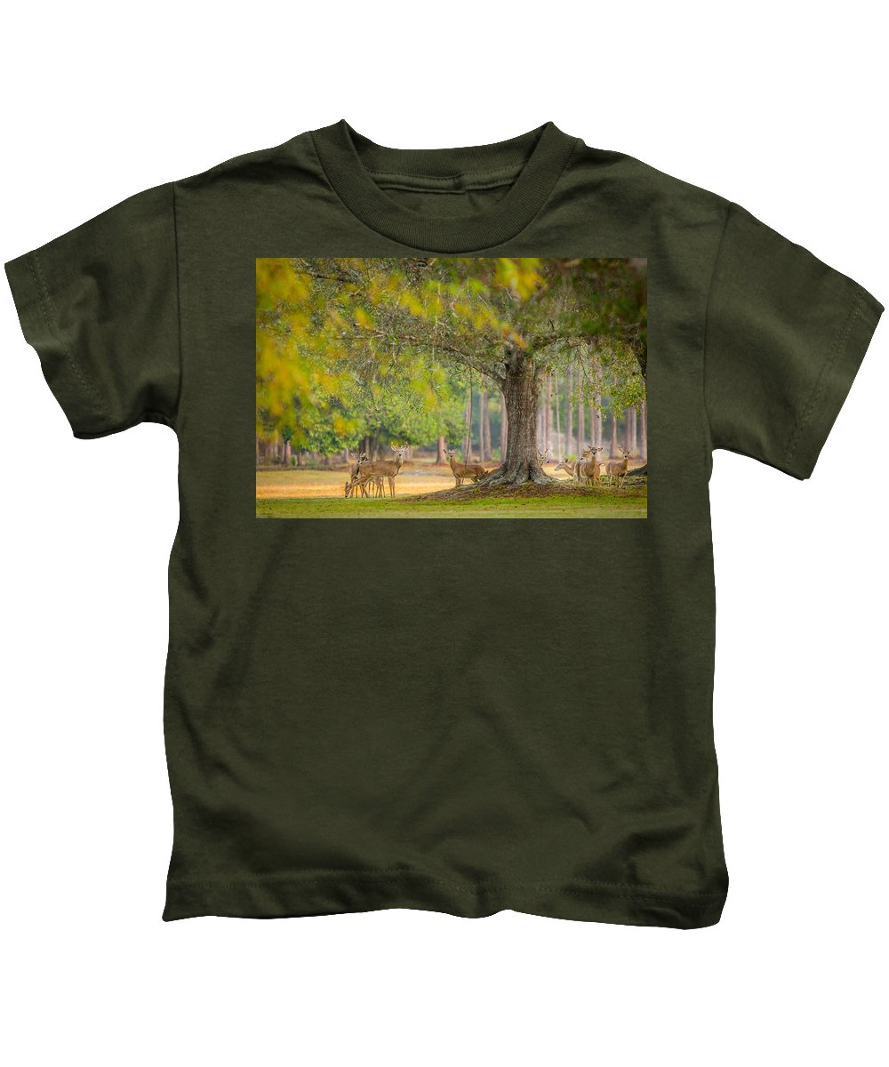 Deer Kids T-Shirt featuring the photograph Deer Crossing by Dennis Goodman