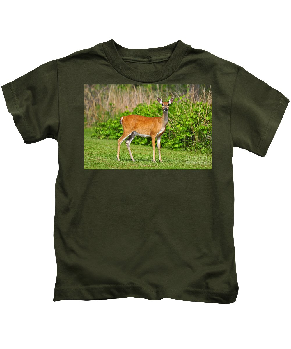 Deer Kids T-Shirt featuring the photograph Delightful Doe by Al Powell Photography USA