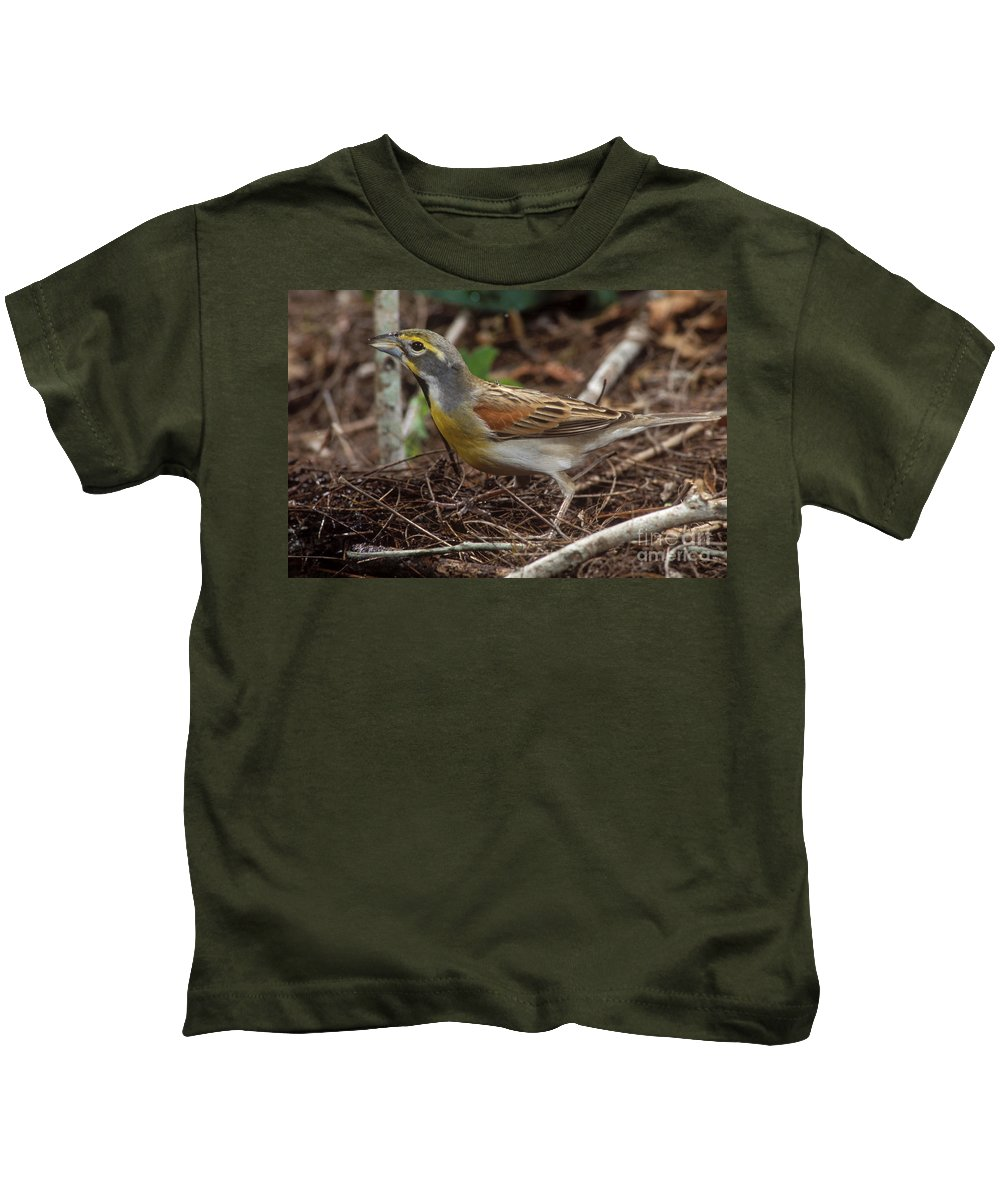 Animal Kids T-Shirt featuring the photograph Dickcissel by Anthony Mercieca