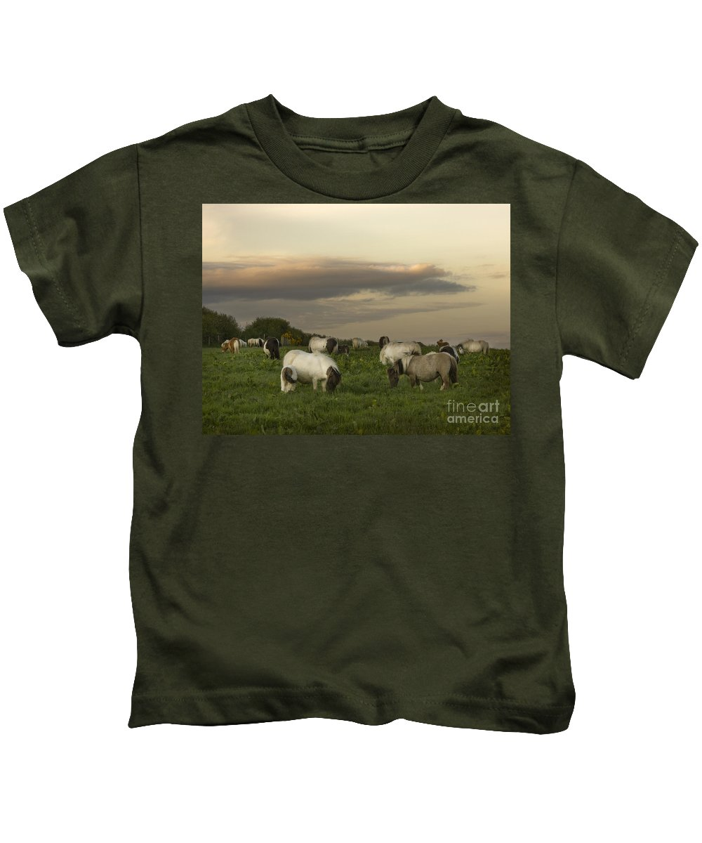 Ponies Kids T-Shirt featuring the photograph Dining Ponies by Angel Ciesniarska
