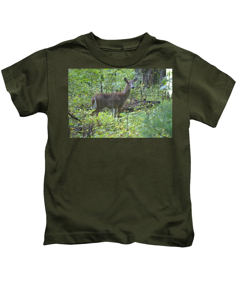 Cades Cove Kids T-Shirt featuring the photograph Doe A Deer by Laurie Perry
