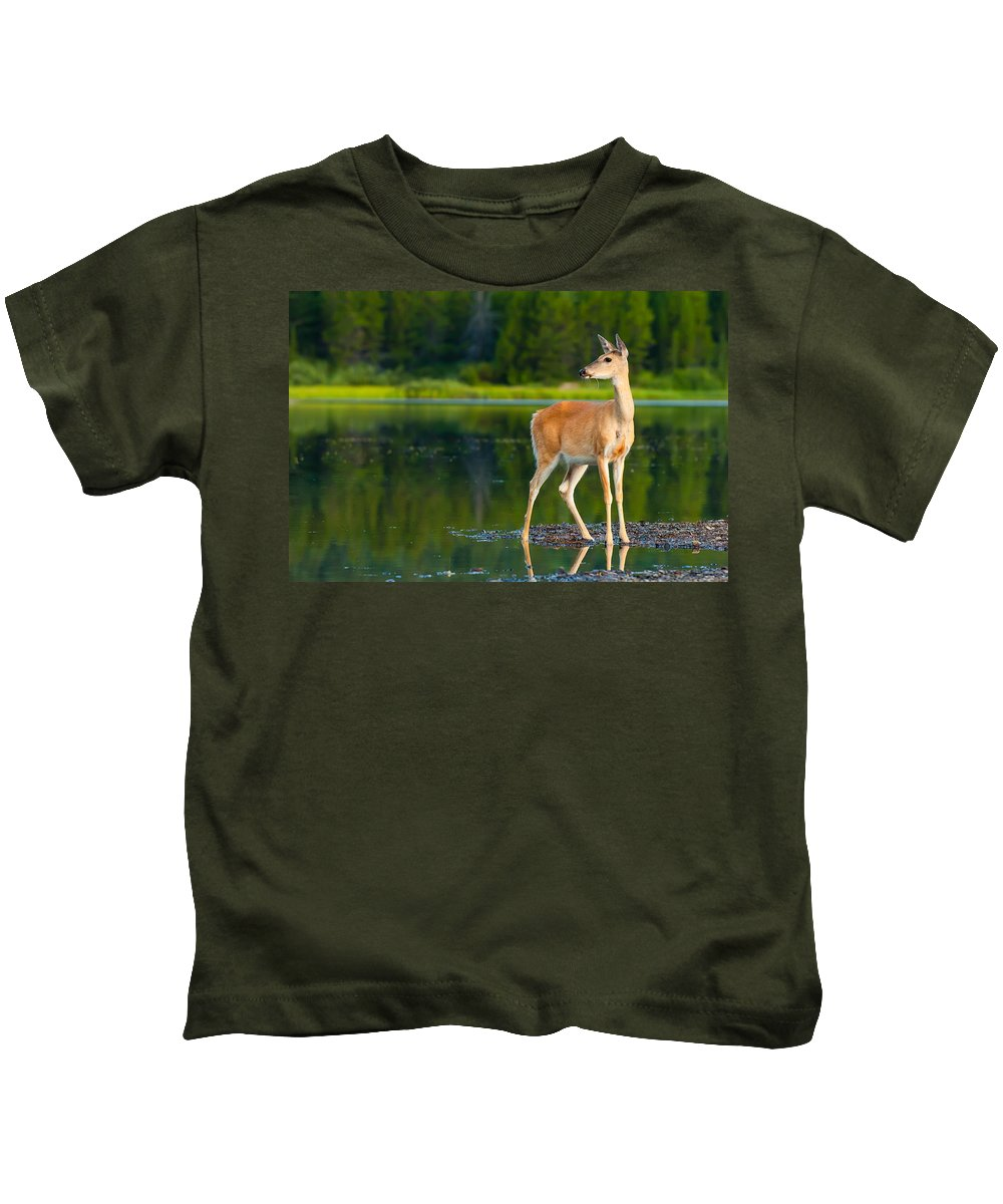 Animal Kids T-Shirt featuring the photograph Doe by Sebastian Musial
