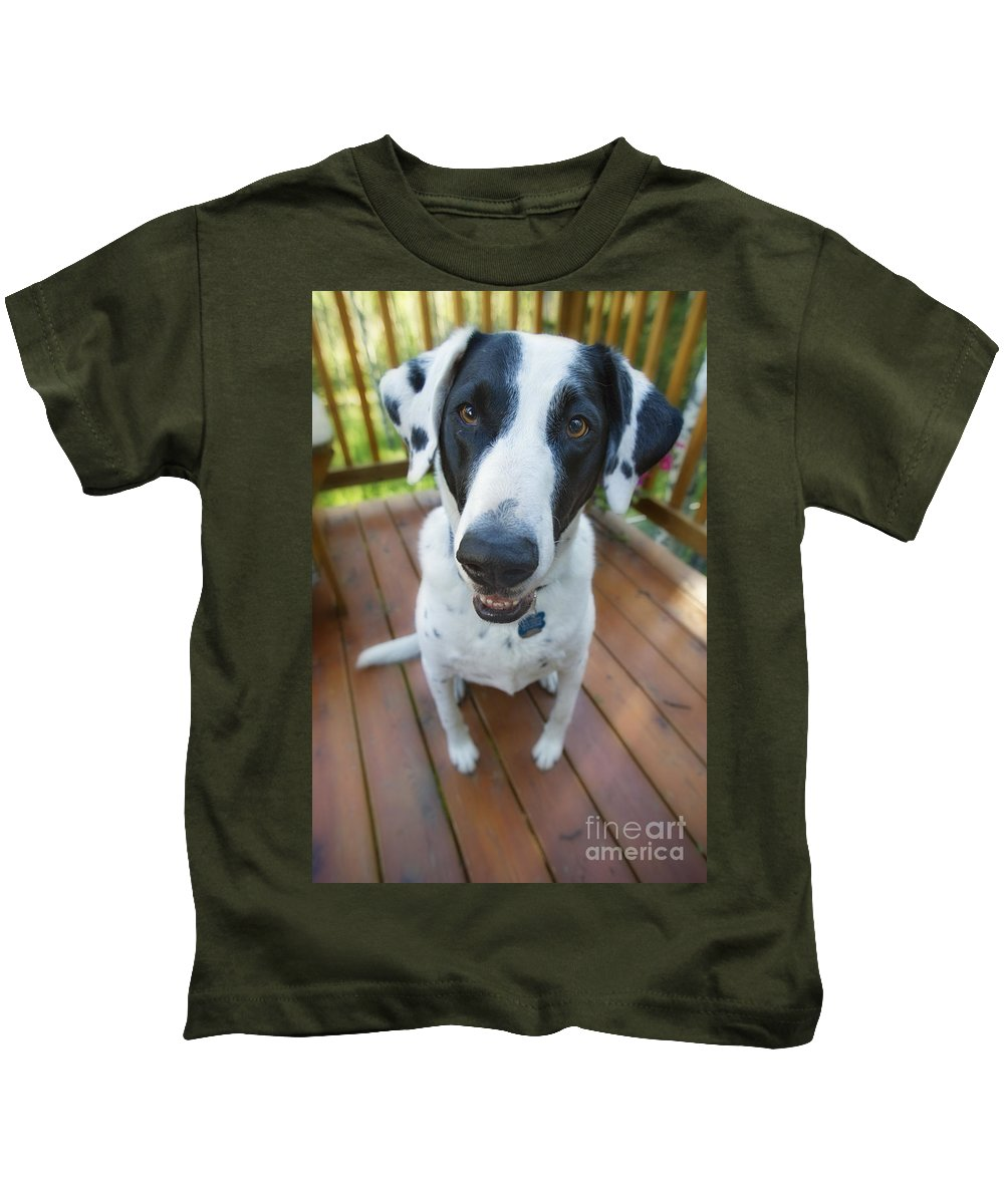 Animal Kids T-Shirt featuring the photograph Dog On A Wooden Deck by Wave Royalty Free