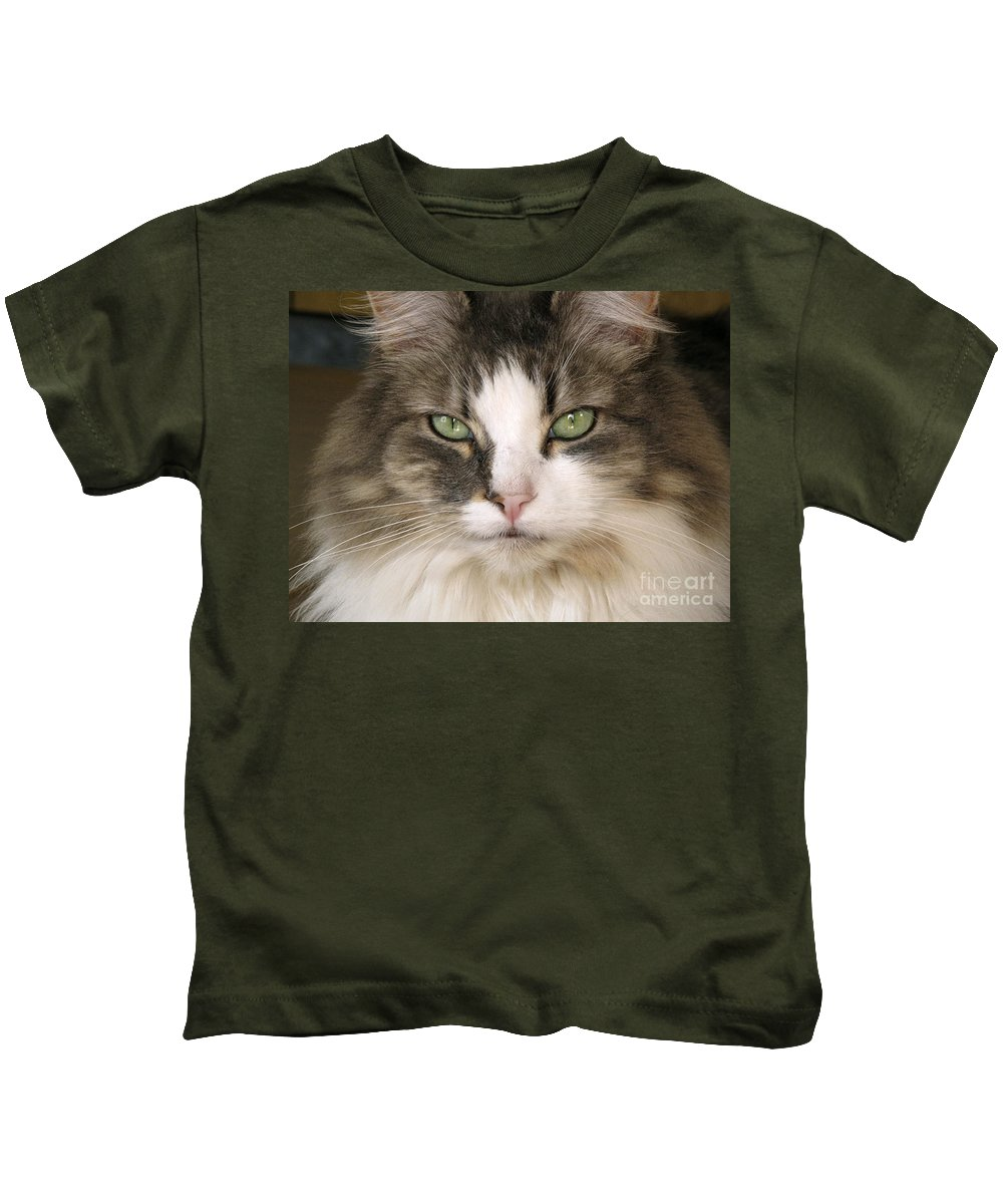 Fauna Kids T-Shirt featuring the photograph Domestic Cat by Peter Skinner