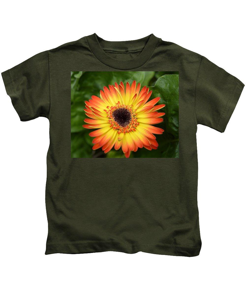 Gerber Kids T-Shirt featuring the photograph Dsc834d-002 by Kimberlie Gerner