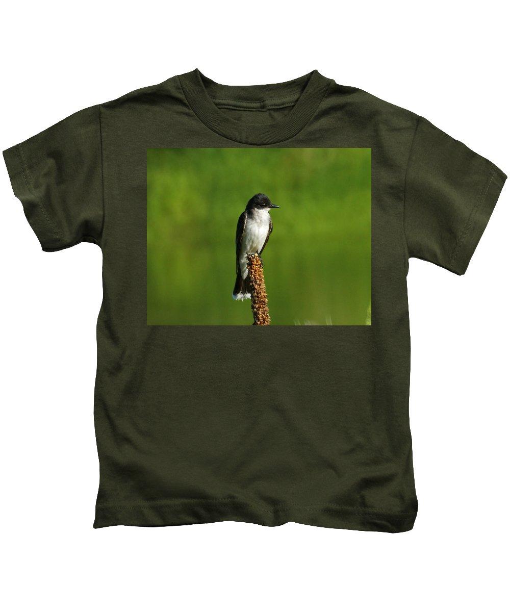 Eastern Kingbird Kids T-Shirt featuring the photograph Eastern Kingbird by Ernie Echols
