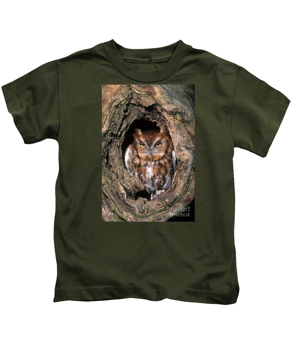 Red Kids T-Shirt featuring the photograph Eastern Screech Owl - Fs000810 by Daniel Dempster