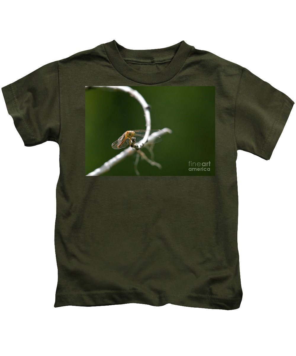Common Red Darter Kids T-Shirt featuring the photograph Eye To Eye by Cheryl Baxter