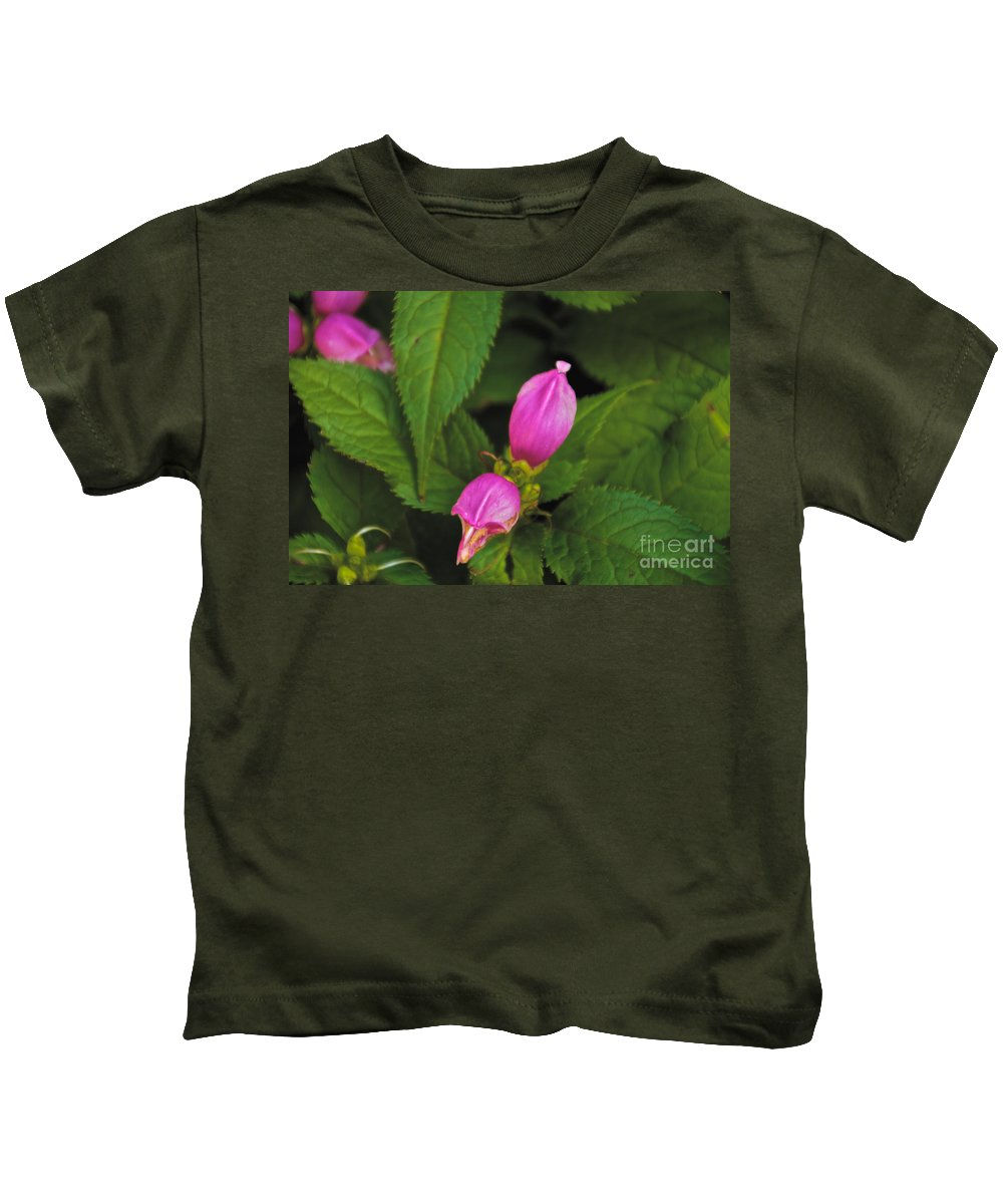 Pink Kids T-Shirt featuring the photograph Fall Buds by William Norton