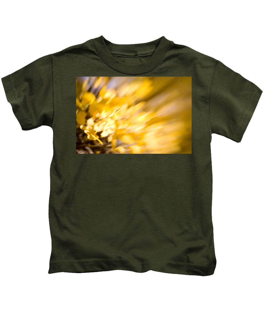 Color Kids T-Shirt featuring the photograph Fall Colors 6730 by Timothy Bischoff
