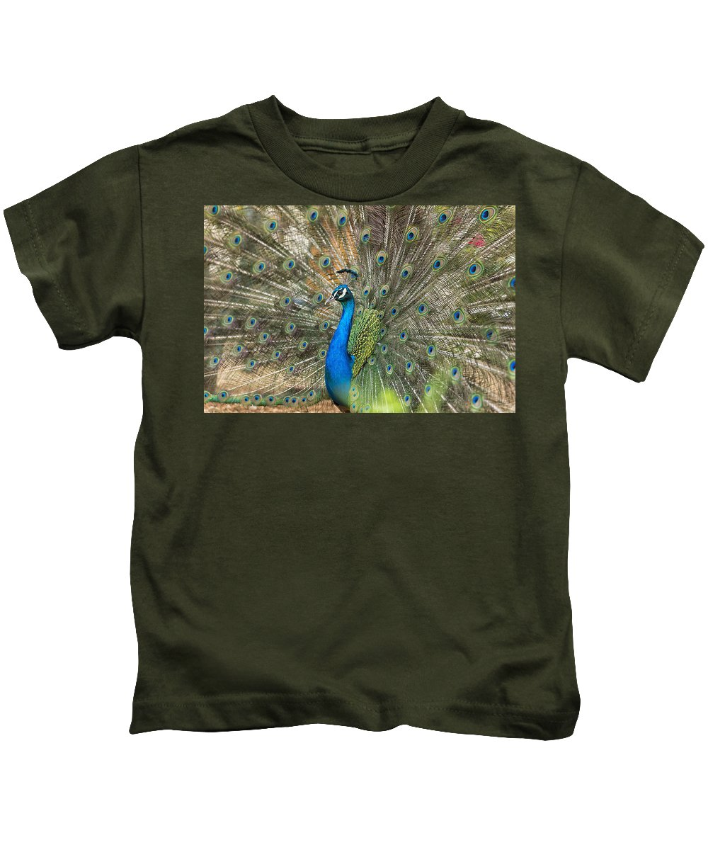 Peacock; Feathers Kids T-Shirt featuring the photograph Feathers by Focus Fotos