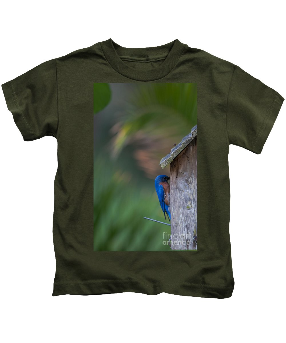 Eastern Blue Bird Kids T-Shirt featuring the photograph Feeding Her Babies by Dale Powell