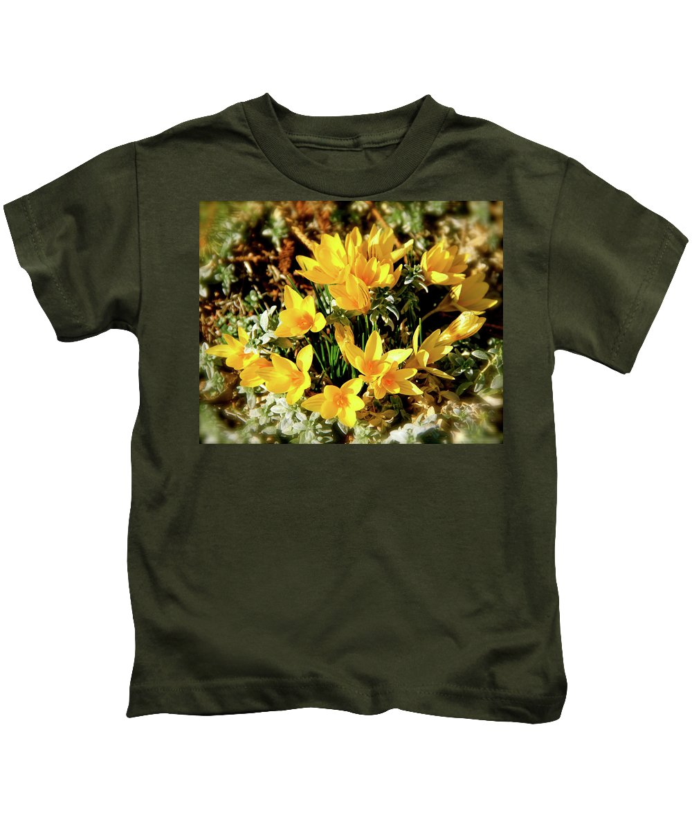 Crocus Kids T-Shirt featuring the photograph First Crocus Serenade by Ed Riche