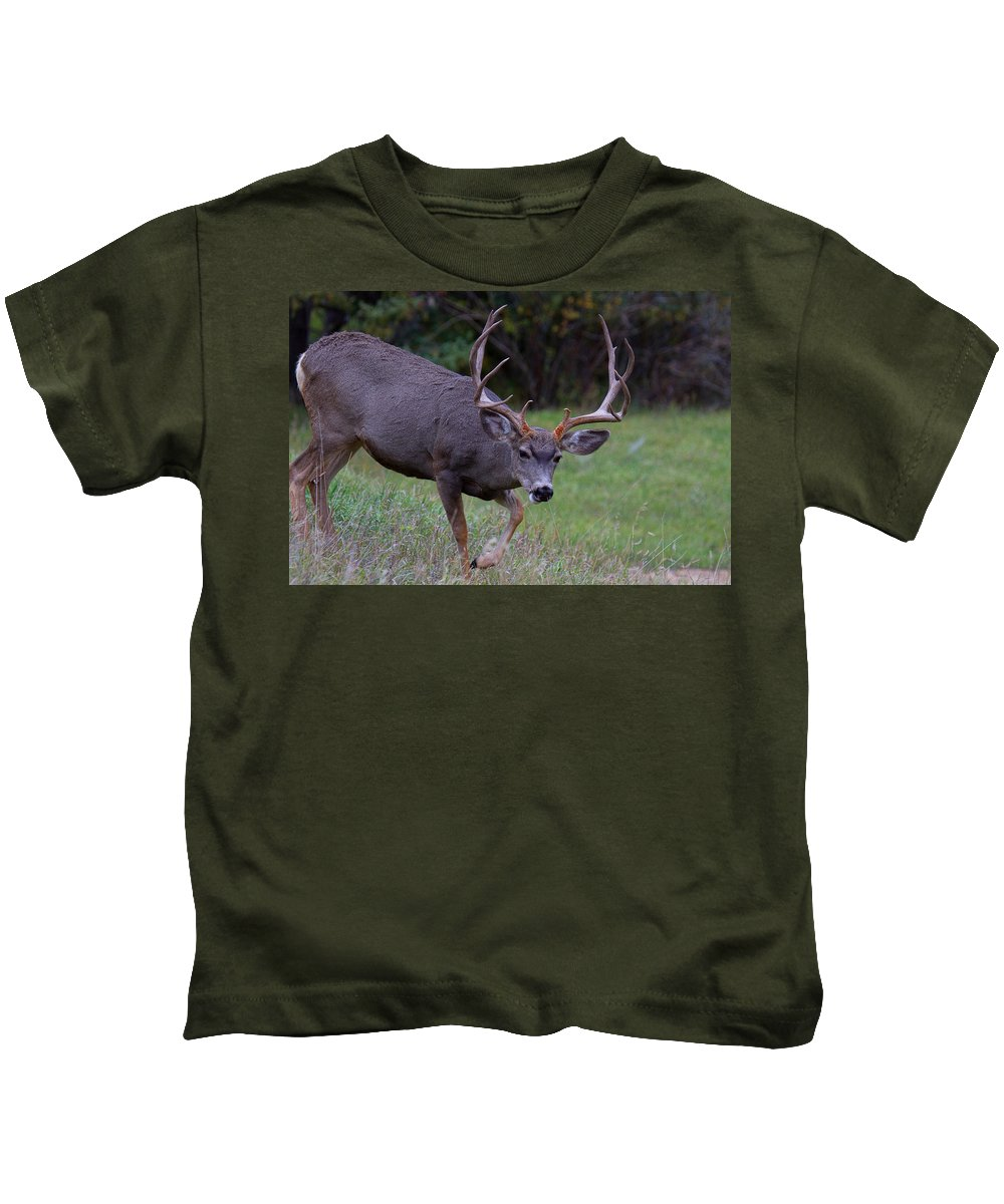 Deer Kids T-Shirt featuring the photograph Five By Five by Jim Garrison