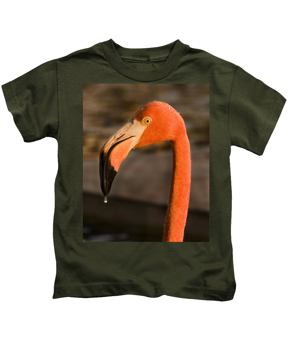 3scape Kids T-Shirt featuring the photograph Flamingo by Adam Romanowicz