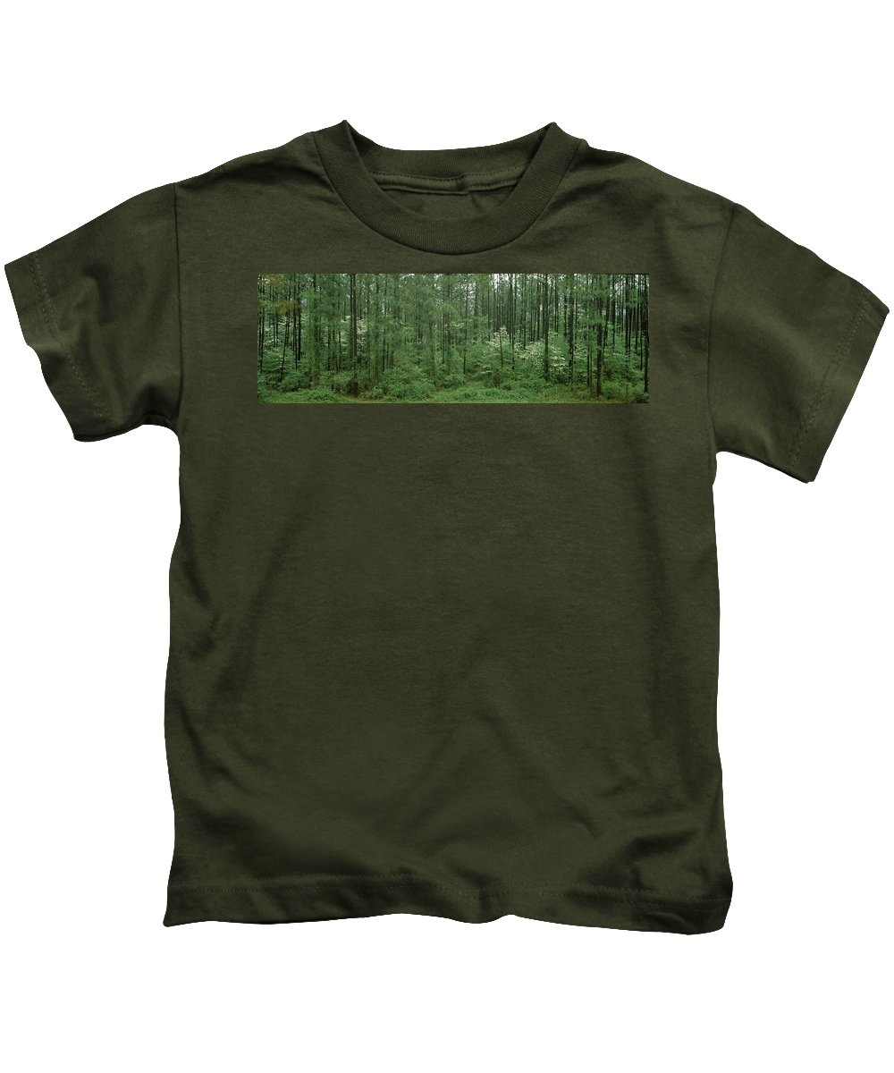 Photography Kids T-Shirt featuring the photograph Flowering Dogwood Cornus Florida Trees by Panoramic Images