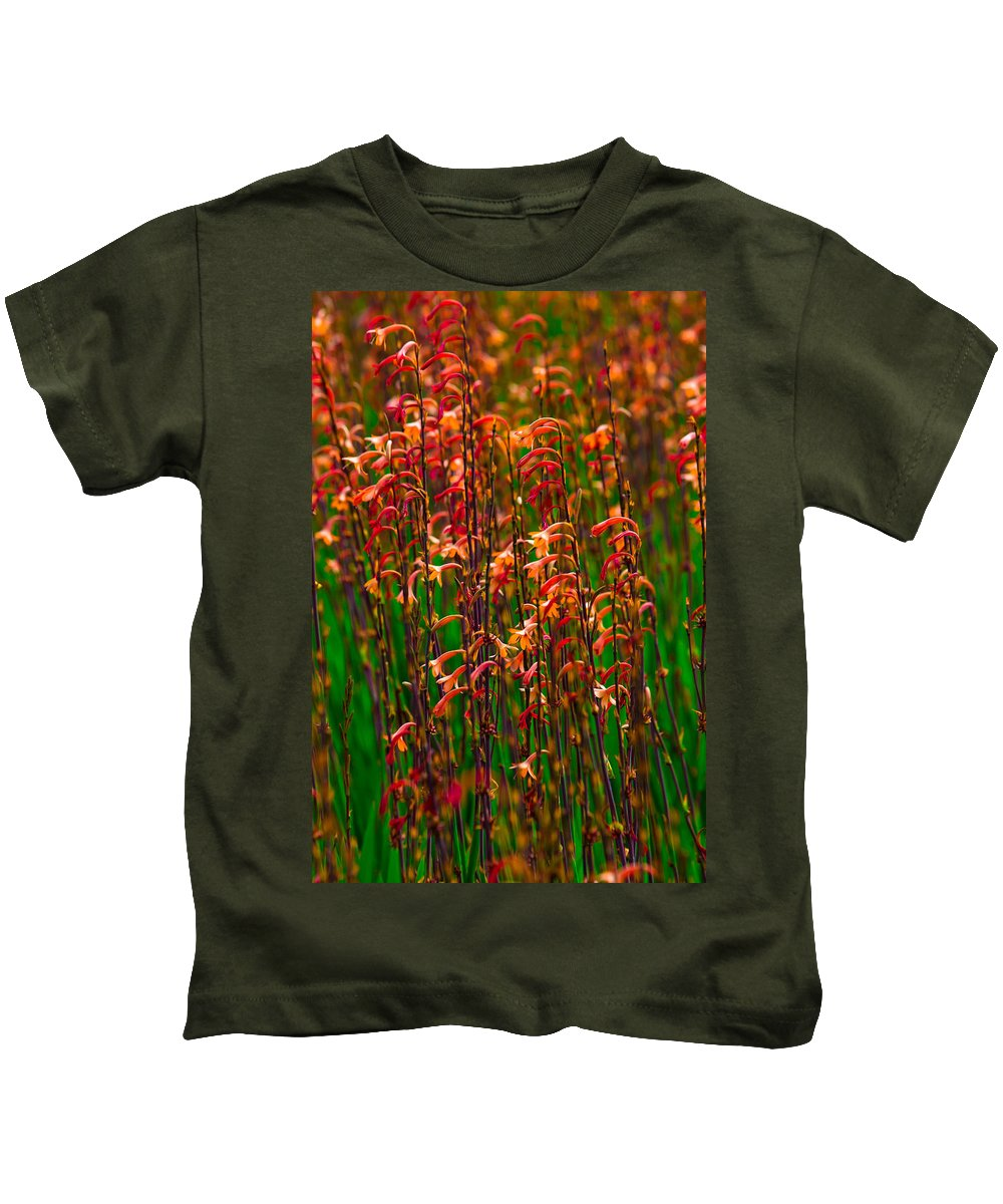 Leaves Kids T-Shirt featuring the photograph Flowers Of Fire by Edgar Laureano