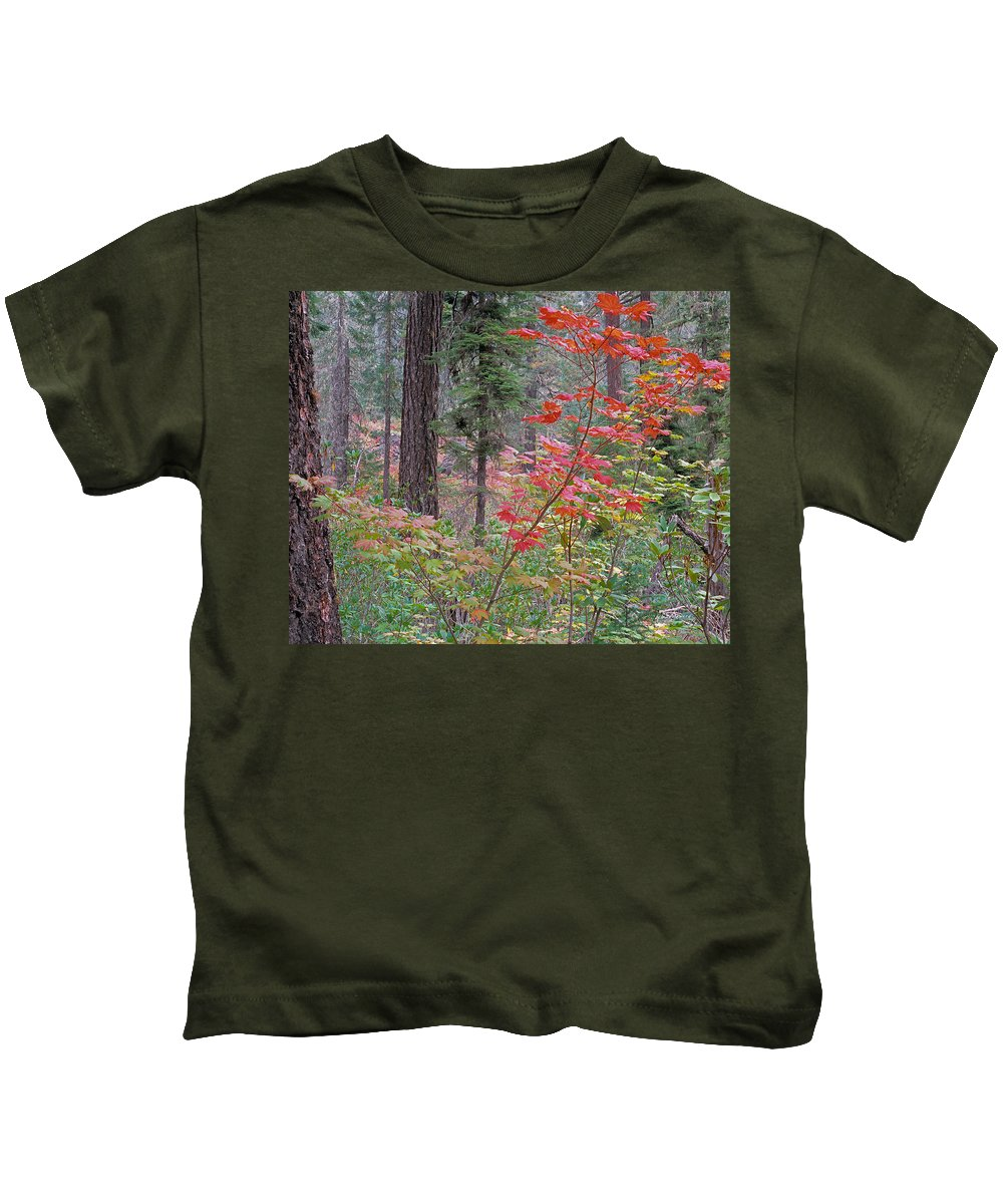 Autumn Kids T-Shirt featuring the photograph Forest Autumn by Leland D Howard